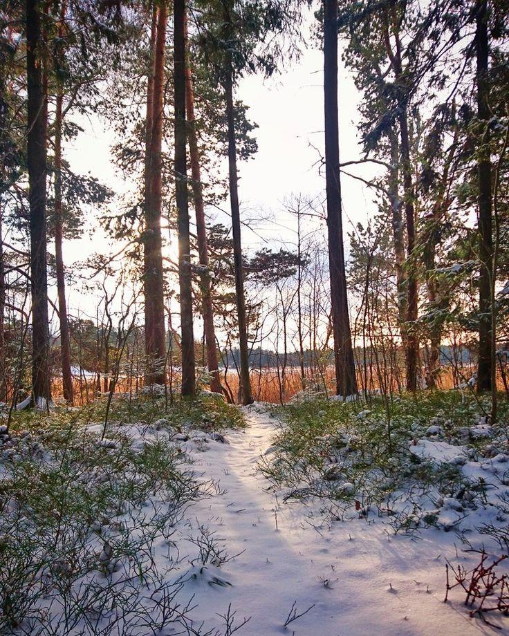 November 2016 in Espoo, Finland