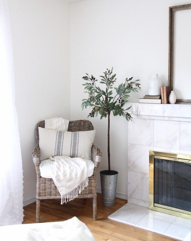Hello Craftberry Bush friends, it's Annie from Zevy Joy this week and I am so happy to be here with you sharing how to make a faux olive tree. I love displaying greenery throughout our home whateve...