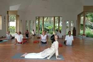 kratinwellness.com/panchakarma-treatment-india/yogasala