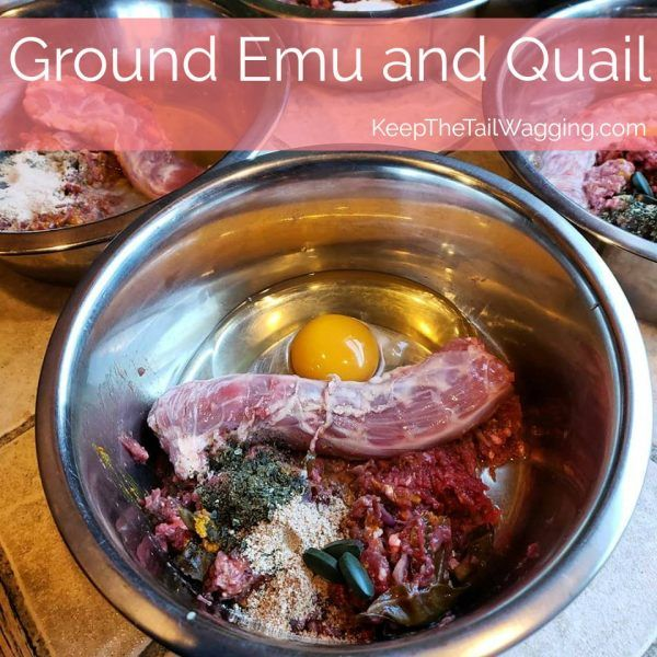 Ground Emu And Quail Raw Dog Food Dog Food Recipes Raw Dog Food Recipes Raw Dog Food Diet