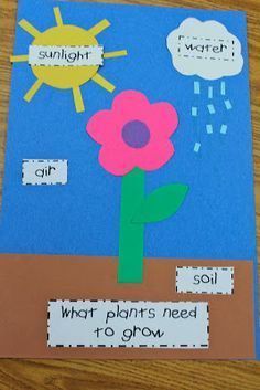 Parts of a plant: we did this in Playschool a few weeks ago with kids ages 1-5 and took our time talking about the various things a plant needs to grow as we added each one and then our labels. We added a label for the stem, one for the leaf, and the petals. For the flower petals we used cupcake liners, a great activity for kids especially preschool age that's interactive, educational, and fun! A great precursor to planting real flowers or plants in the classroom or home as we did yesterday!