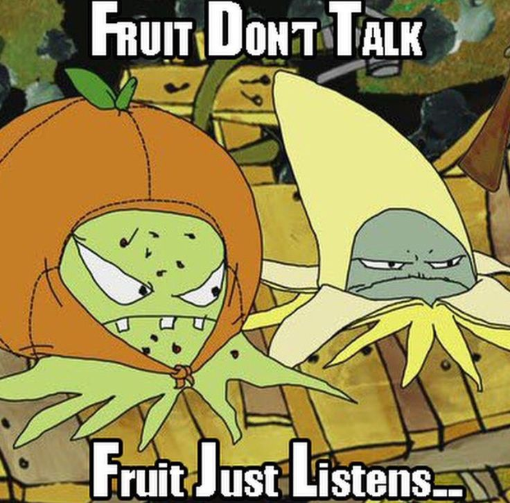 #squidbillies