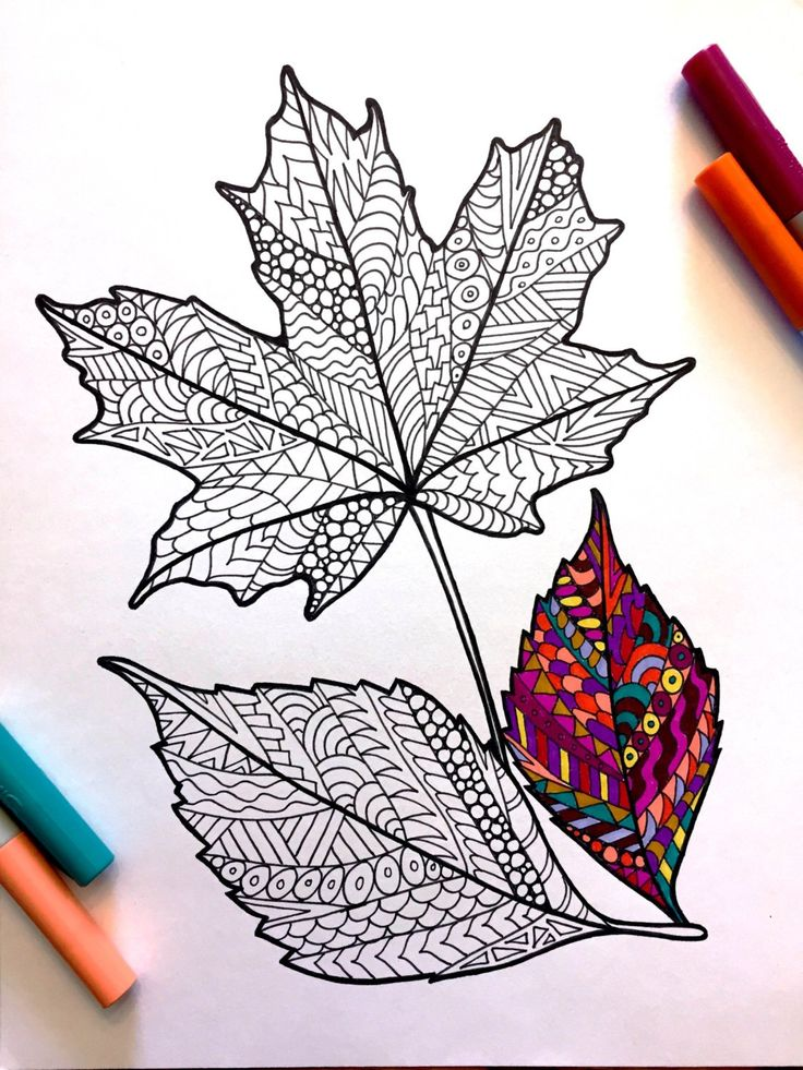Fall Leaves PDF Zentangle Coloring Page Art drawings