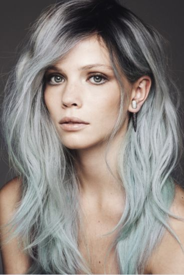 Grey with Black Roots
