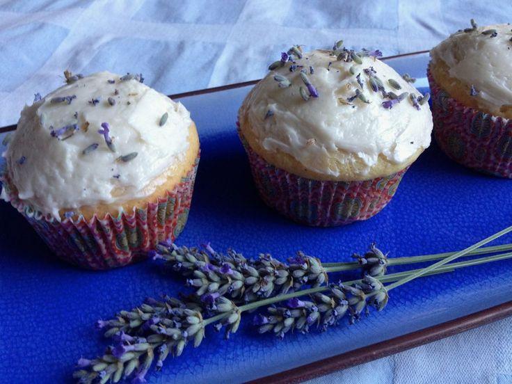 17 Best images about Lavish Lavender on Pinterest ...