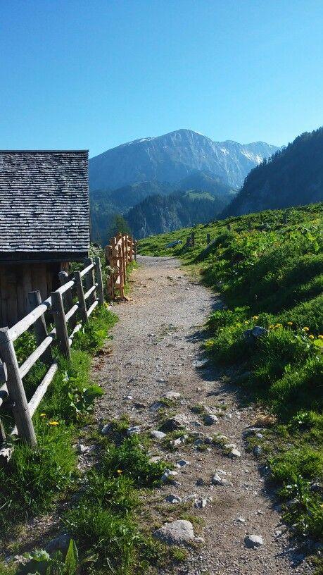 Bei der Priesbergalm (Berchtesgaden) Germany