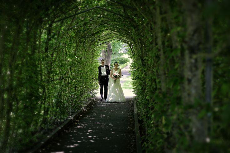 Bride and dad walking under greenery