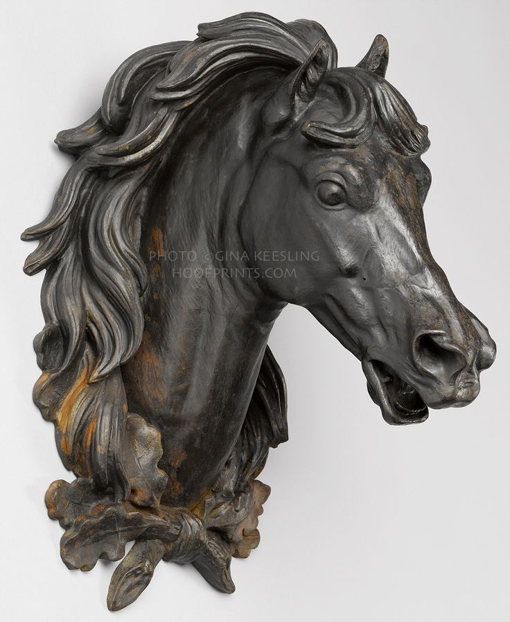 104 Best Horse Heads Images On Pinterest Horses Horse And Equine Art