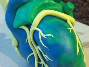 As 3D printing materials get cheaper, medicine will be among top industries for market growth Pictured: human heart 3D printing Read more: http://medcitynews.com/2013/04/as-3d-printing-materials-get-cheaper-medicine-will-be-among-top-industries-for-market-growth/#ixzz2Q48TeZrL