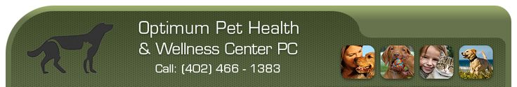 Veterinarians, Lincoln, NE, Optimum Pet Health  Wellness Center, Dr. Ruppert: Optimum Pet, Pet Hospitals, Pet Care, Pet Stuff, Pet Health