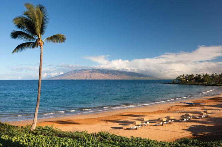 Maui Beach Resort - http://www.facebook.com/1673784149539709/posts/1687143084870482