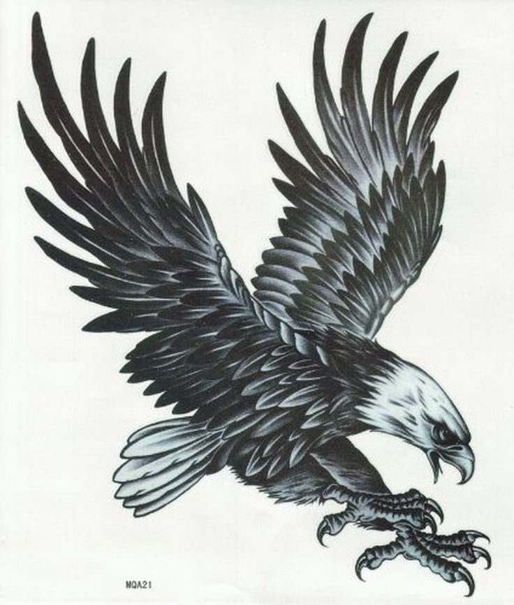 Best 25  Eagle Tattoos Ideas On Pinterest Drawing