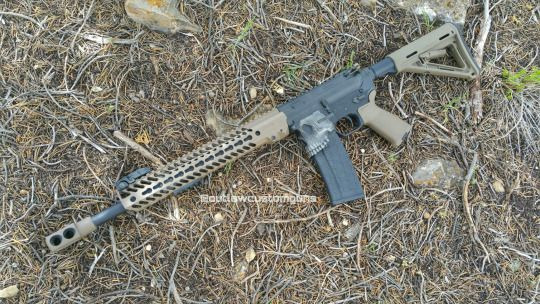 50 Beowulf project