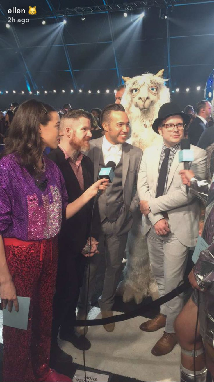 Ellen captures Fall Out Boy being interviewed by Miranda Sings whilst a creepy llama watches from a distance