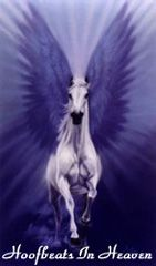 """""""God forbid I should go to any heaven in which there are no horses."""" ~R.B. Cunninghame-Graham"""