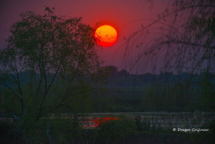 Apus de soare in Delta Neajlovului