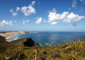 Cape Maria Van Diemen from Cape Reinga  www.mustdonewzealand.co.nz
