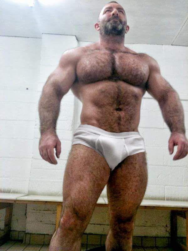 Pin on gay bears