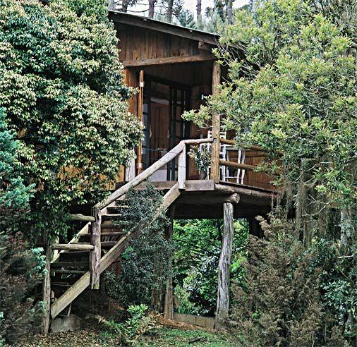 28 fachadas de chal s e casas de madeira rvores for Fachadas de casas modernas em belo horizonte