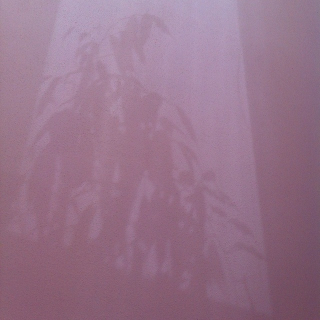 Shadow of my very personal flower at my ceiling in my new flat:) welcome spring:)