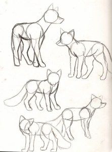 40 Free & Simple Animal Sketch Drawing Data & Concepts