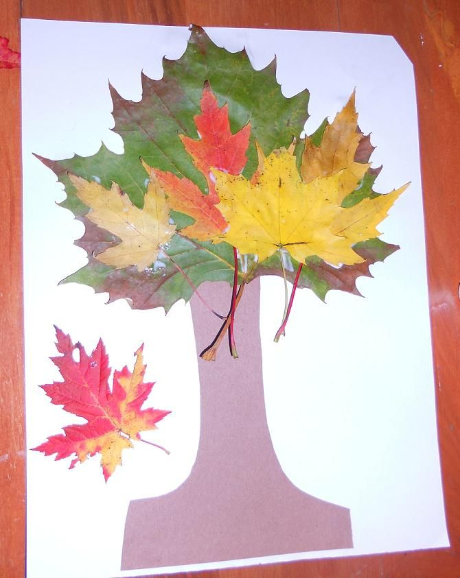 Fun Preschool Activities: Easy Crafts for Kids: Tree with Real Leaves