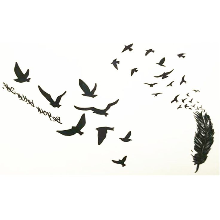 10x6cm Temporary Small Cute Fashion Tattoo Seagull And Feathers