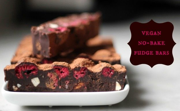 vegan no-bake fudge bars
