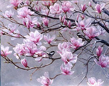 Quot Spring Blossoms Quot Chickadees And Magnolias By Beth