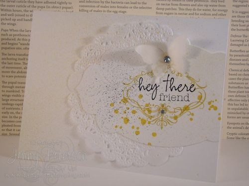WELCOME KIT- We love how versatile the stamps from the first Paper Pumpkin kit are!