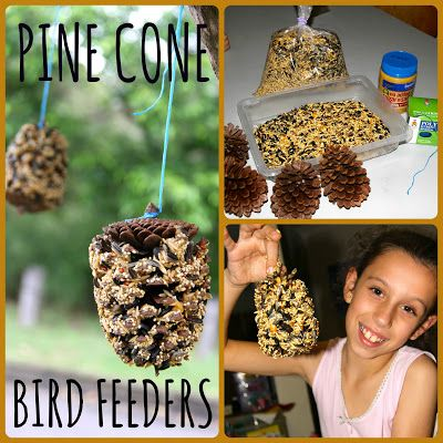 Pine Cone Bird Feeders from Four Little Piglets