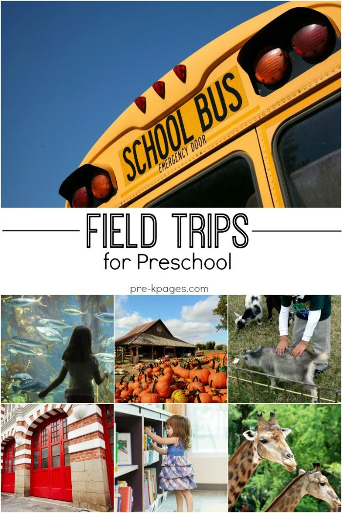 Preschool Field Trip Ideas. Fun field trip ideas for preschool and kindergarten kids. Teacher tips for planning and preparing for your field trip too!