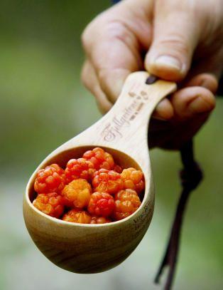 Multer - cloudberry