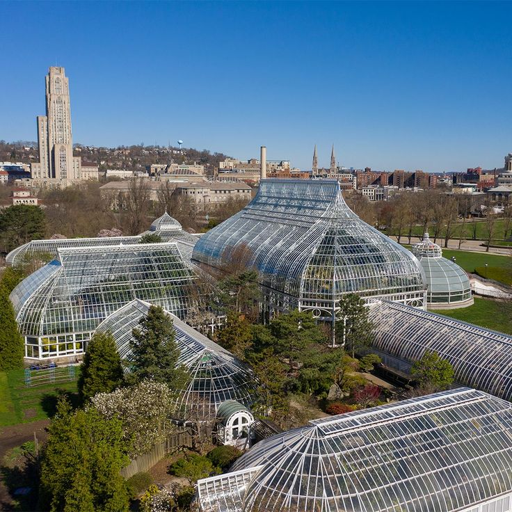 Phipps Conservatory and Botanical Gardens on Twitter in 2020