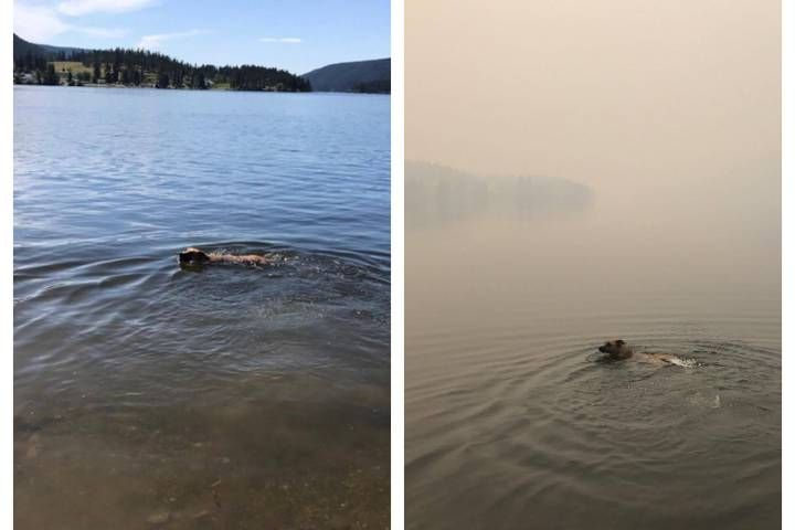 A before and after photo, taken just one week apart, shows just how quickly the air quality has deteriorated in the Williams Lake region due to the numerous wildfires burning there.
