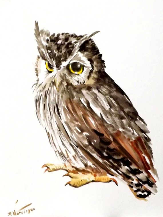 Northern White faced owl original watercolor by ORIGINALONLY, $42.00