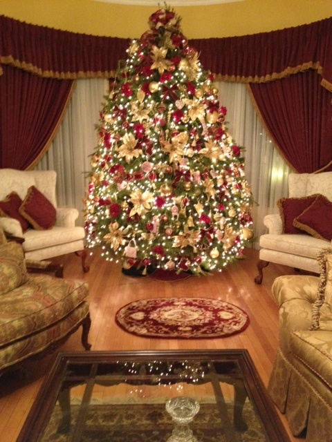 17 best images about beautiful victorian home christmas for Top 10 living room plants