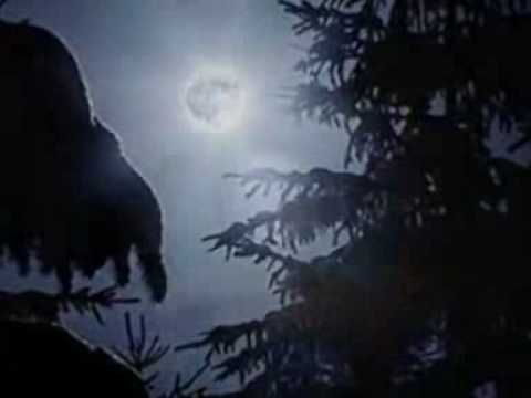 Claro de Luna - Beethoven - YouTube