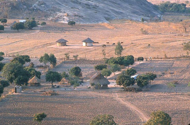 Shona-Gehöfte bei Murewa Zimbabwe - Simbabwe