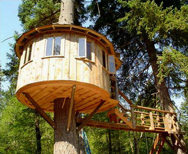 15 best treehouses images on pinterest tree houses