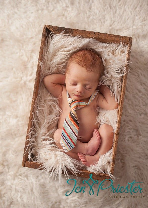 Lovely newborn session from Jen Priester Photography!