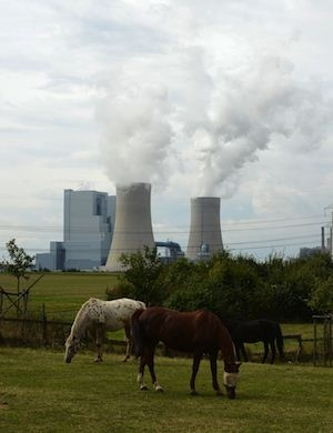 NEW POWER SUPPLY: Horses graze in front of the new Neurath lignit coal-fired RWE power station at Grevenbroich, Germany. RWE, one of Germany's major energy provider invested in new coal conducted power plants. (AFP)