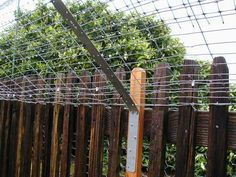 45-degree angle Cat Proof Fence.  Start upper fencing lower to protect the neighbor's view?
