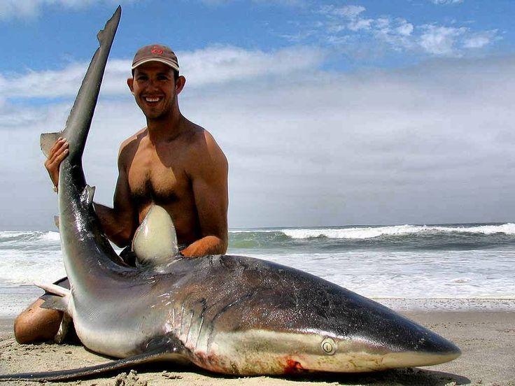 Buenas noticias!  República Dominicana ha prohibido la pesca de todas las especies de tiburón por tiempo indefinido.  Mediante la resolución 023/2017 el Ministerio de Medio Ambiente establece que la veda de todas las especies de tiburones es por tiempo indefinido mientras que para el pez loro es de dos años y erizo cinco años.  El anuncio fue hecho por el Ministro de Medio Ambiente Francisco Domínguez Brito durante una actividad realizada en el Acuario Nacional la cual contó con la presencia…
