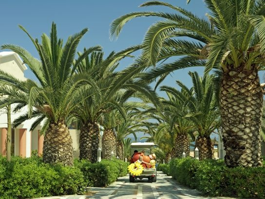 Family friendly Knossos Royal with lush gardens and easy reach spectacular beach