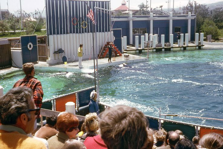 Marine World/Africa USA in Redwood City, CA in 1970