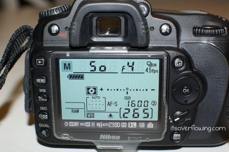 How to Take Better Pictures – Learning all about Aperature!