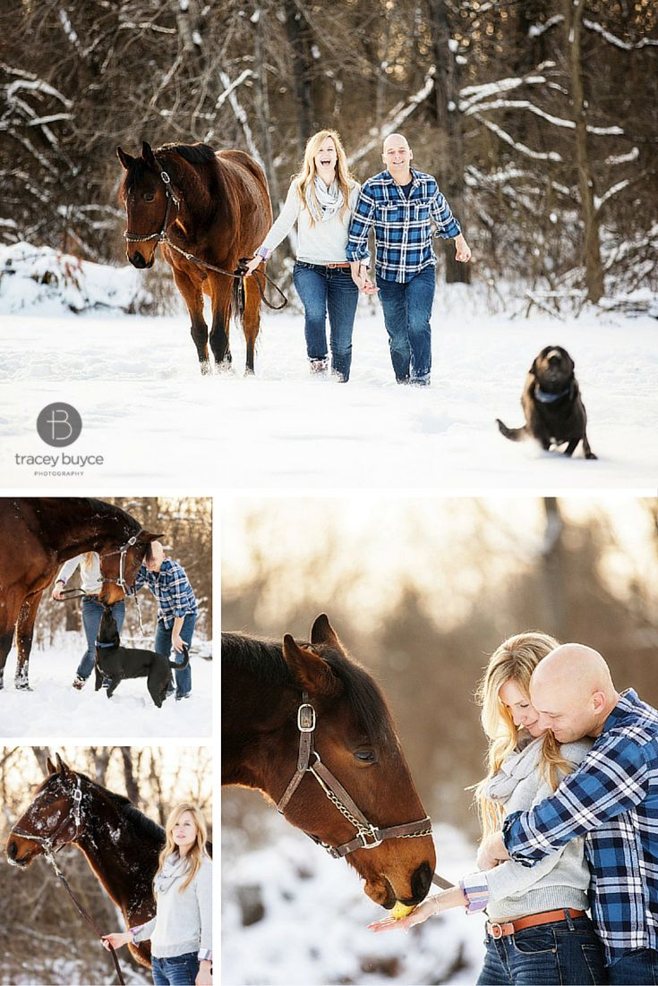 winter engagement photos with horse and dog | Tracey Buyce Photography #engagementphotos