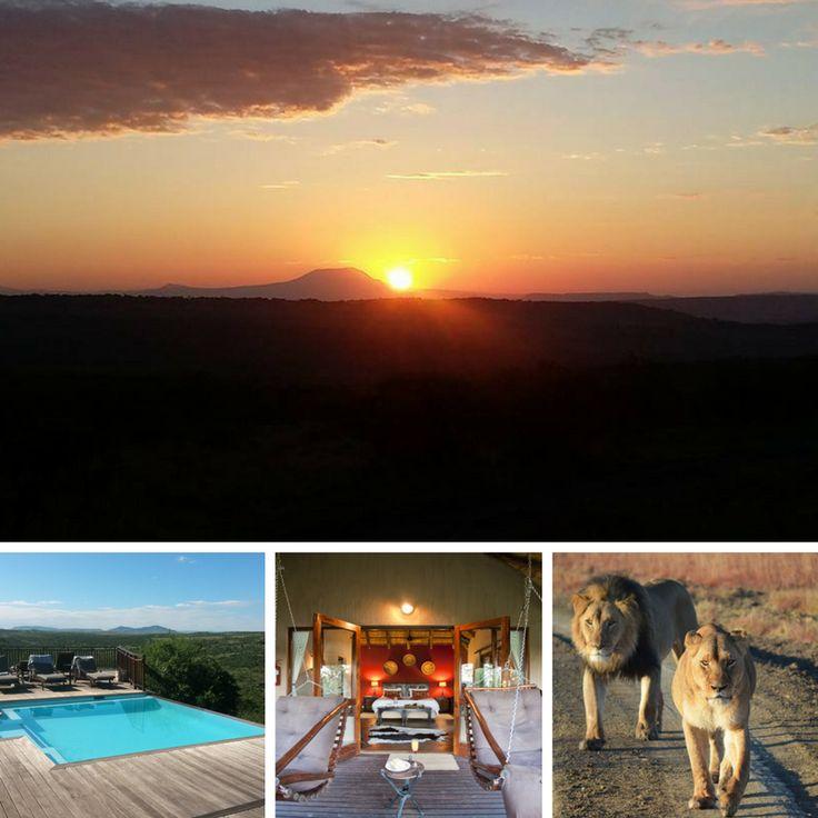 Book Your Big 5 Holiday, Honeymoon or Wedding Through Us and Get Discounted rates - Debbie@weddingflair.co.za https://www.facebook.com/ShowMeTheBig5/