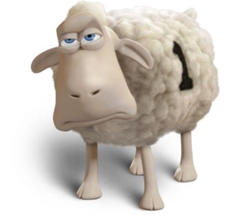 America S Mattress Elkins Wv Counting Sheepcharleston Scmattressesbeddingback